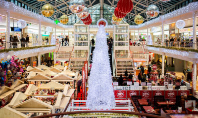 building-christmas-tree-indoors-186613